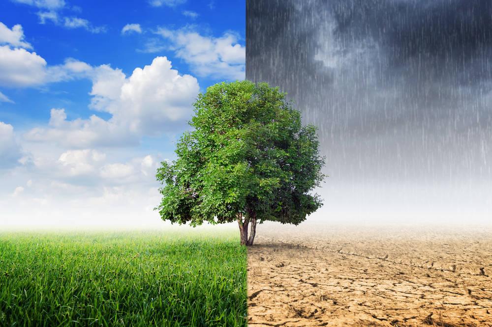 Gas natural: energía limpia