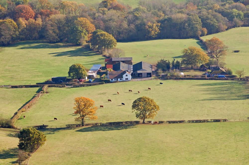 Economía y Calidad, factores importantes en la agricultura