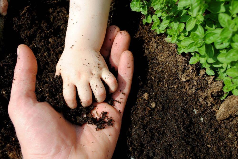 ¡Súmate al cambio! Apuesta por la agricultura sostenible y ecológica