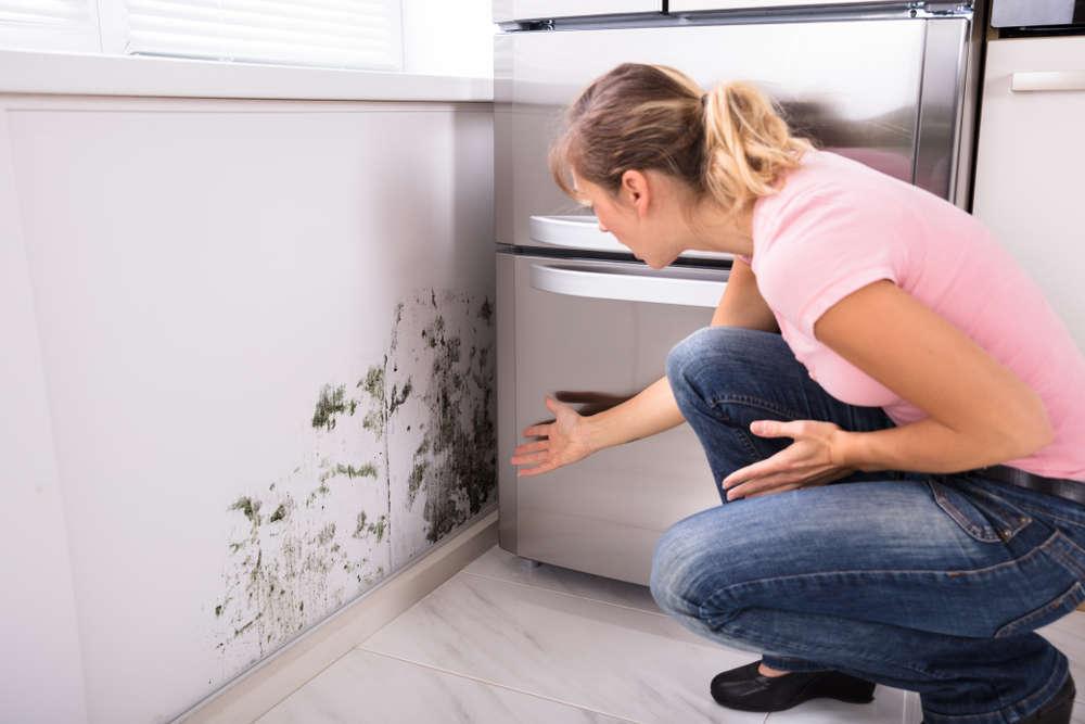 Cómo eliminar la humedad en casa sin dañar el medioambiente